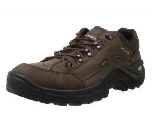 Lowa Renegade GTX Lo Shoe