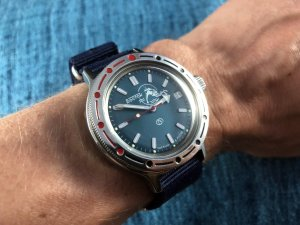 Vostok Amphibia On Wrist